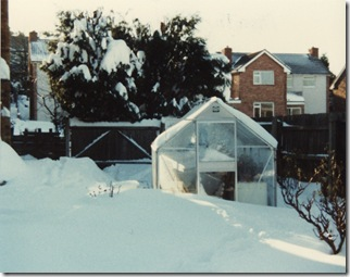 Winnipeg Drive garden snow 1982